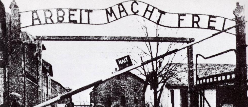The children of Auschwitz remember