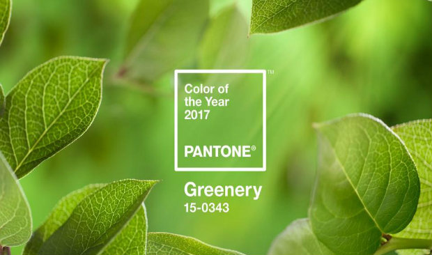 GREENERY: The Color of 2017 color of 2017 GREENERY: The Color of 2017! Greenery The Color of 2017 1