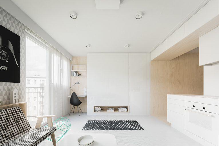 Small Apartment Ideas Under 50 Square Meters