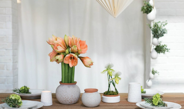 Best reasons to use ceramic in your home decor home decor Best reasons to use ceramic in your home decor feat