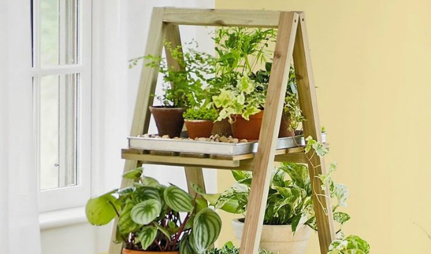 Elect the best vintage furniture for your indoor plants-5