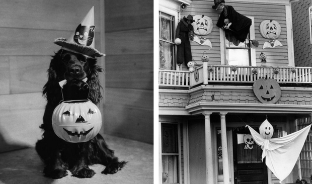 The Scariest Halloween Decoration Ideas For Your Vintage Home!