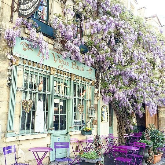 The French Café Scene You Need To Visit When in Paris! 4